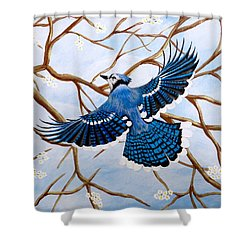 Soaring Blue Jay  Shower Curtain by Teresa Wing