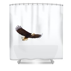 Shower Curtain featuring the photograph Soaring High 0881 by Michael Peychich