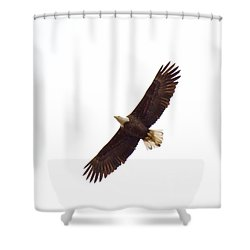 Shower Curtain featuring the photograph Soaring High 0885 by Michael Peychich