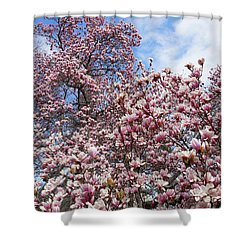 Soaring Magnolia Shower Curtain