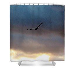 Soaring  Shower Curtain by Nance Larson