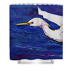 Soaring Over Egret Bay Shower Curtain