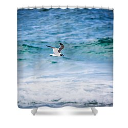 Soaring Over The Ocean Shower Curtain by Shelby Young