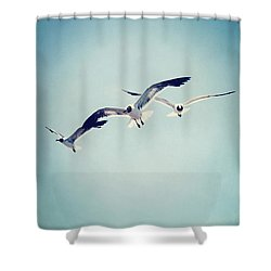 Shower Curtain featuring the photograph Soaring Seagulls by Trish Mistric