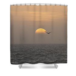 Shower Curtain featuring the photograph Soaring Through Sunrise by Robert Banach