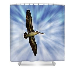 Soaring With Ease At Puerto Lopez Shower Curtain