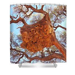 Social Weaver Nest Shower Curtain