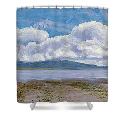 Soda Lake After The Storm Shower Curtain