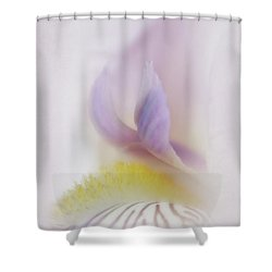 Shower Curtain featuring the photograph Soft And Delicate Iris by David and Carol Kelly