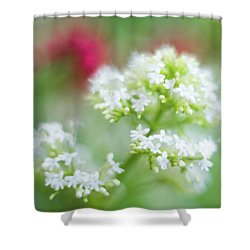 Soft And Gentle Shower Curtain