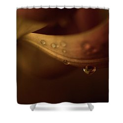 Soft And Smooth Shower Curtain