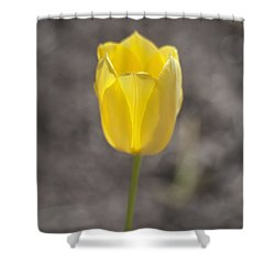 Soft And Yellow Shower Curtain