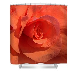 Shower Curtain featuring the photograph Soft Begonia by AJ  Schibig