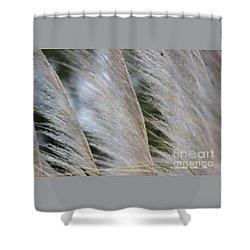 Soft Breeze Shower Curtain
