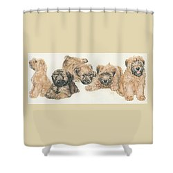 Soft-coated Wheaten Terrier Puppies Shower Curtain