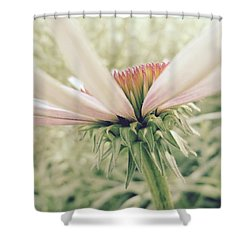 Soft Colors Shower Curtain by Tim Good
