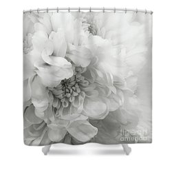Soft Dahlia White Shower Curtain