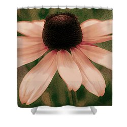 Soft Delicate Pink Daisy Shower Curtain