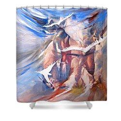 Soft Flight 2 Shower Curtain