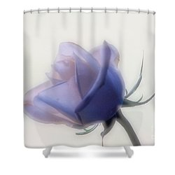 Soft Focus Rose Shower Curtain