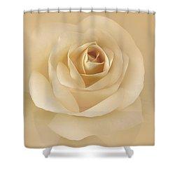 Soft Golden Rose Flower Shower Curtain by Jennie Marie Schell