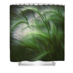 Soft Grass Shower Curtain