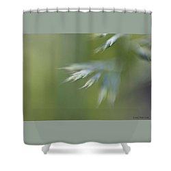 Soft Green Shower Curtain