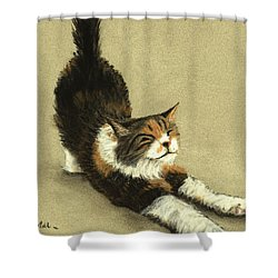 Shower Curtain featuring the painting Soft Kitty by Anastasiya Malakhova