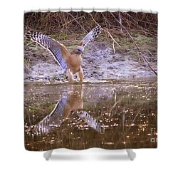 Soft Landing On The Pond Shower Curtain by Carol Groenen