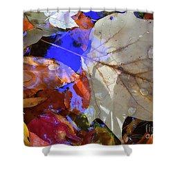 Soft Light Leaves Shower Curtain