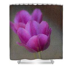 Soft Pastel Purple Tulips  Shower Curtain by Teresa Mucha