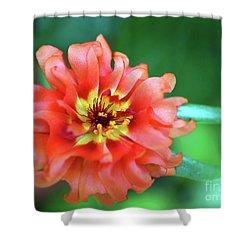 Soft Peach Ruffled Petals Shower Curtain by Sue Melvin