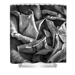 Soft Petals For My Valentine Shower Curtain