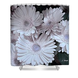 Soft Pink Daisy Bouquet Shower Curtain by Jeannie Rhode