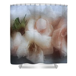 Soft Pink Roses Shower Curtain by Louise Kumpf