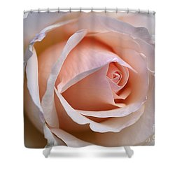 Soft Rose Shower Curtain by Joy Watson