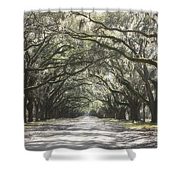 Soft Southern Day Shower Curtain by Carol Groenen