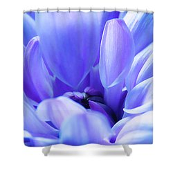 Soft Touch 2 Shower Curtain