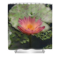 Soft Touch Lily Shower Curtain