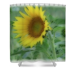 Soft Touch Sunflower Shower Curtain