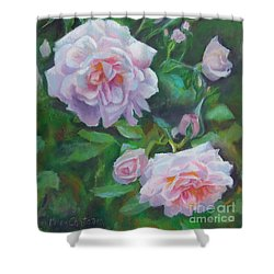 Shower Curtain featuring the painting Softly Pink Roses by Karen Kennedy Chatham