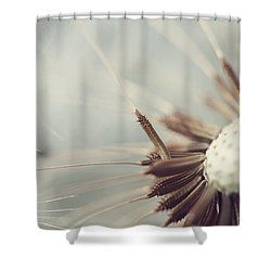 Shower Curtain featuring the photograph Softly Slowly by Amy Tyler