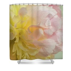 Softness And Light Shower Curtain