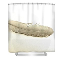 Softness Of A Feather Shower Curtain