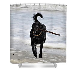 Soggy Stick Shower Curtain by Al Powell Photography USA