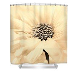Shower Curtain featuring the photograph Soiree In Creamy Yellow by Darlene Kwiatkowski