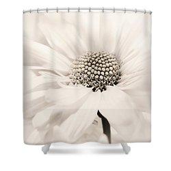 Shower Curtain featuring the photograph Soiree In Sepia by Darlene Kwiatkowski