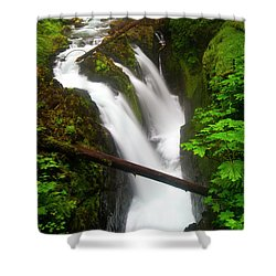 Sol Duc Rush Shower Curtain