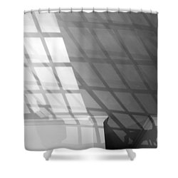 Solar Cat I 2013 Limited Edition 1 Of 1 Shower Curtain