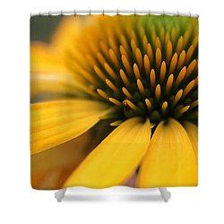 Solar Flare Shower Curtain